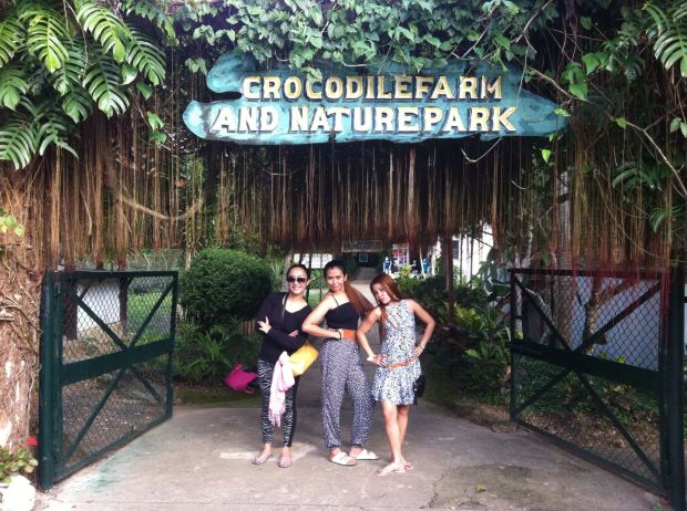 crocs farm groupie