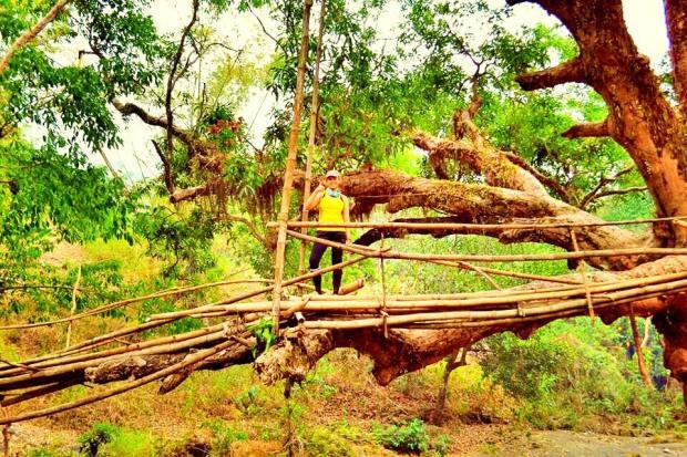 Old Bamboo Brige in Mt Manalmon Trail in Maragondon Cavite