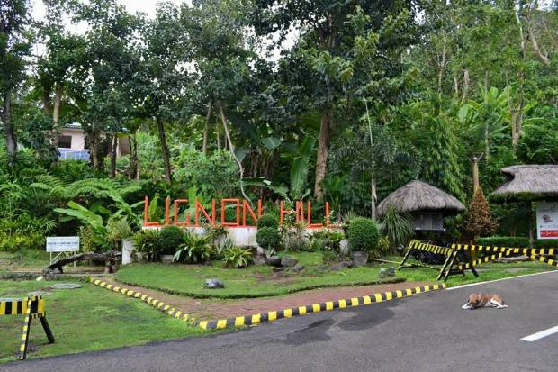 I welcome myself at Lignon Hill
