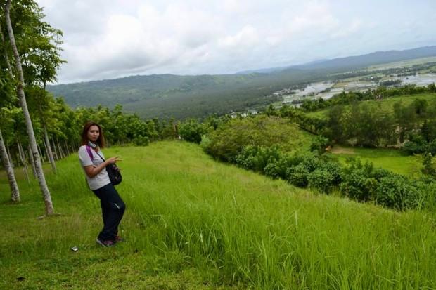View at the top of Kawa Kawa Hills
